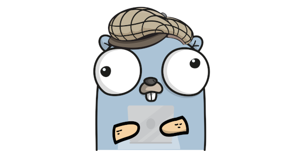The Golang Guy Limited